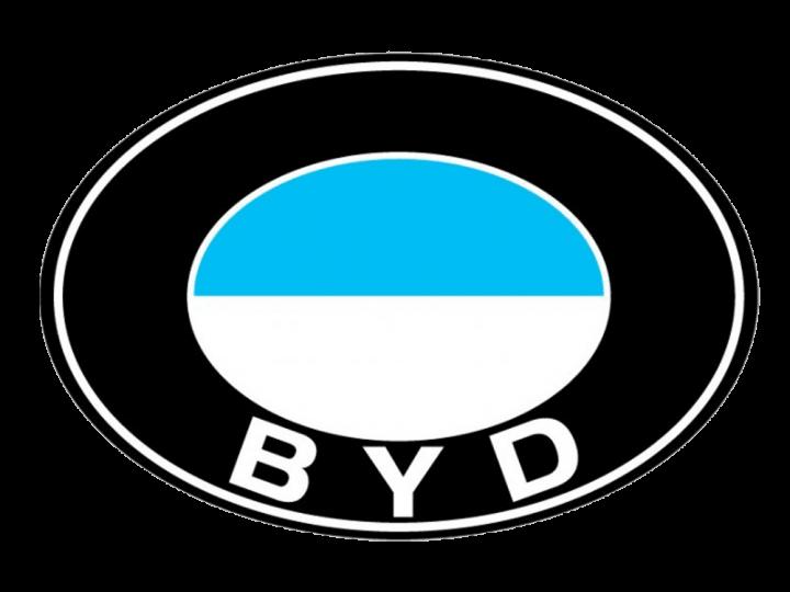 BYD Logo 2003